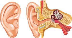 oreilles bouchées